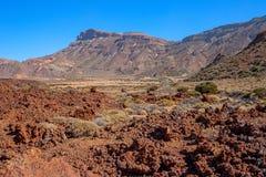 El Taide火山的山麓小丘 免版税图库摄影
