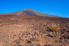 El Taide火山的山麓小丘 库存照片