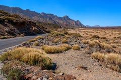 El Taide火山的山麓小丘 免版税库存照片