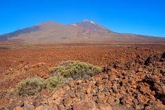 El Taide火山的山麓小丘 免版税库存图片