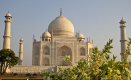 El Taj Mahal Foto de archivo