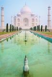 El Taj Mahal en niebla de la mañana Fotos de archivo