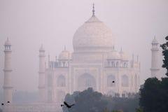 El Taj Mahal en niebla de la mañana Imagenes de archivo