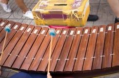El tambor del juego de la mujer pega el pulso del xilófono con la caja de la donación Imagen de archivo libre de regalías