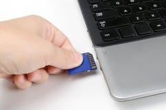 El tapar en tarjeta del SD en el ordenador portátil Imágenes de archivo libres de regalías