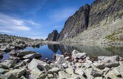 El Tarn en montañas Imágenes de archivo libres de regalías