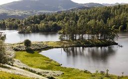 El Tarn Howes, distrito inglés del lago, Cumbria, Inglaterra Imagenes de archivo