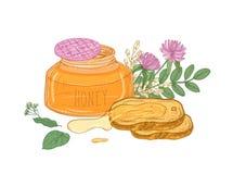 El tarro de cristal abierto de la miel orgánica, par de pan corta la mentira en las ramas de la placa, del acacia y del tilo, flo Stock de ilustración