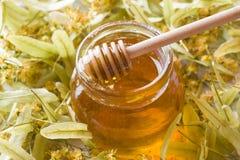 El tarro de cristal de miel en el fondo del tilo florece Imagenes de archivo