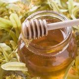 El tarro de cristal de miel en el fondo del tilo florece Imágenes de archivo libres de regalías