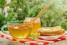 El tarro de la miel del tilo, del casquillo del té del tilo y del tilo florece en un día soleado Foto de archivo