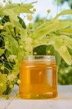 El tarro de la miel del tilo y del tilo dulces frescos florece Fotos de archivo libres de regalías
