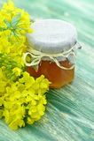El tarro de miel deliciosa en un tarro con la rabina florece Imagenes de archivo