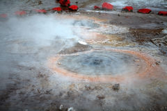 El Tatio喷泉,智利 免版税库存照片