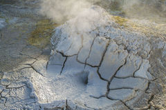 El Tatio Geysers Atacama Desert Chile Royalty Free Stock Photos