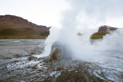 El Tatio geysers, Chile Stock Image