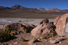 El Tatio landscape Royalty Free Stock Images