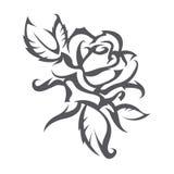 El tatuaje de se levantó Imagen de archivo libre de regalías