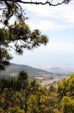 El teide国家公园(特内里费岛) 免版税图库摄影