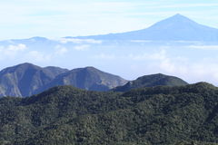 el teide火山 免版税图库摄影