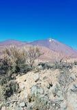 El Teide Obrazy Stock