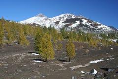 El Teide Royalty Free Stock Image