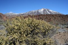 El Teide Royalty Free Stock Photos