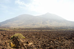 El Teide 6 Royalty Free Stock Photography