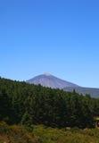 EL Teide della montagna nell'isola di Tenerife Immagini Stock Libere da Diritti