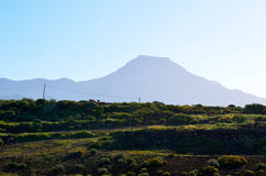El Teide and dry vegetation Stock Photo