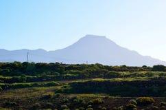 EL Teide e vegetazione asciutta Fotografia Stock