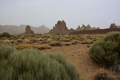 El Teide National Park Stock Images