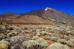 El Teide National Park Stock Images
