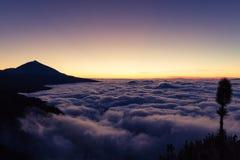 El Teide National Park, Tenerife, Canary Islands, Spain Royalty Free Stock Photography
