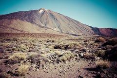 El Teide National Park, Tenerife, Canary Islands, Spain Stock Photography