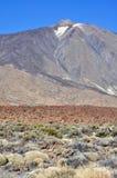 el Teide, Tenerife Arkivbild