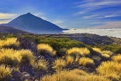 EL Teide, un vulcano in isole Canarie, Tenerife Fotografia Stock