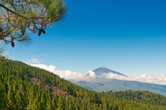 El Teide volcano, Tenerife, Spain. The volcano El Teide in Tenerife island, Canary, Spain Stock Photos