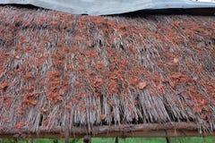 El tejado de la hierba Imágenes de archivo libres de regalías