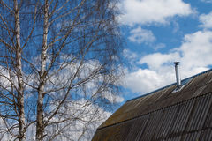 El tejado de los árboles de la casa y de abedul en fondo del cielo azul Imagen de archivo
