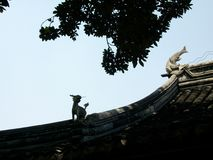 El tejado de teja animal imágenes de archivo libres de regalías