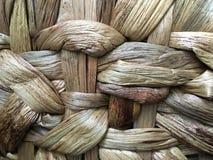 El tejer del jacinto de agua Fotos de archivo