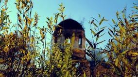 El templo arruinado adentro cae a través de hierba almacen de metraje de vídeo