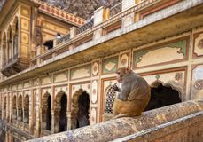 El templo del mono de Galtaji Jaipur foto de archivo libre de regalías
