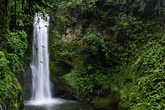 El Templo Waterfall. In La Paz Waterfalls & Gardens. Vara Blanca, Costa Rica royalty free stock photos