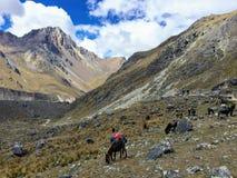 El terreno rocoso, remoto y majestuoso del viaje de Salkantay, h imágenes de archivo libres de regalías