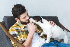 el terrier hermoso de Russell del hombre y del enchufe persigue sentarse en el sofá fotografía de archivo