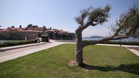 El territorio del parque Sveti Stefan delante de la isla M almacen de metraje de vídeo