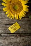 El tesoro manda un SMS hoy en tarjeta de felicitación amarilla Fotografía de archivo