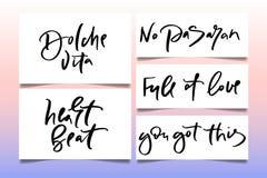 El texto de la caligrafía para las mujeres de la camiseta diseña, tienda femenina de Internet Curve el vita del dolche de las let foto de archivo libre de regalías